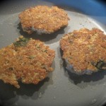 Sprouted Quinoa and Turkey Patties