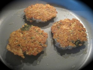 Turkey and Fermented Quinoa Patties